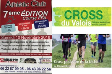 LE CROSS DU WE DU 11 NOVEMBRE